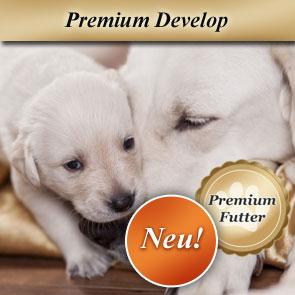 hundefutter f r welpen caninutrix shop. Black Bedroom Furniture Sets. Home Design Ideas